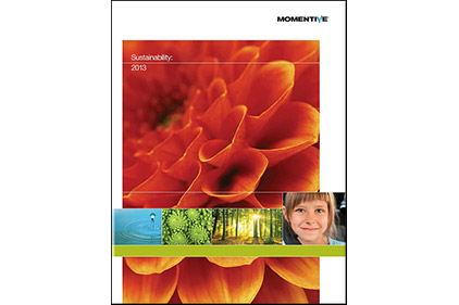 Momentive Releases Sustainability Report