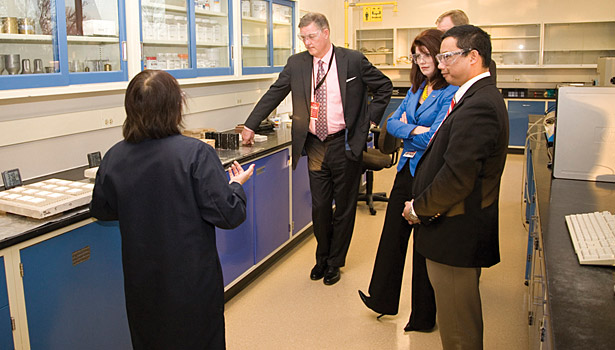 Focus on Bostik